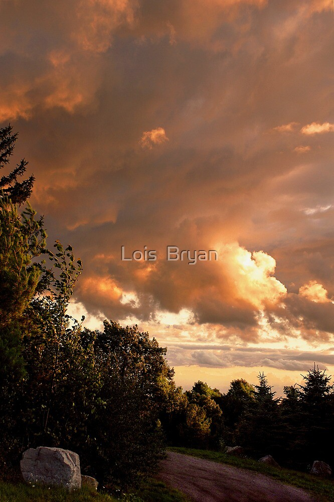 Time To Go Home by Lois  Bryan
