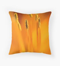 The guild Throw Pillow