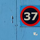 Thirty-seven by Marjolein Katsma