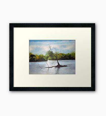 Dead Autumn wood Framed Print