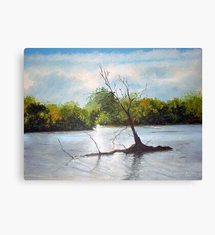 Dead Autumn wood Canvas Print