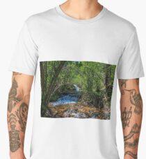 Clear Creek New Mexico Men's Premium T-Shirt