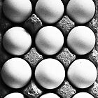 Eggs BW by Linda Bianic