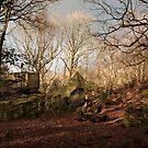 Adel Crag in Winter by MigBardsley