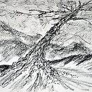 Tree Sketch no.2 by LAURANCE RICHARDSON