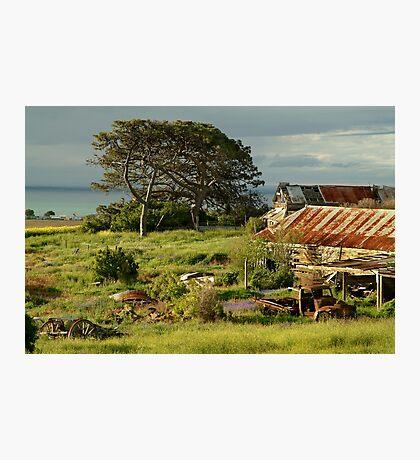 Time Capsule,Bellarine Peninsula Photographic Print