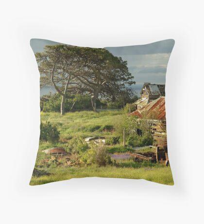 Time Capsule,Bellarine Peninsula Throw Pillow