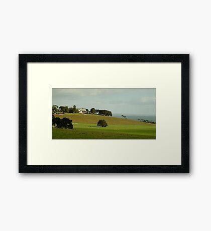Spray Farm,Bellarine Peninsula Framed Print