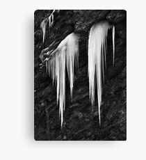 Freezing cold Canvas Print