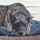 Merle Great Dane by artbyakiko