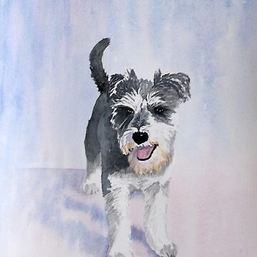 Dexter the Schnauzer by PatEll