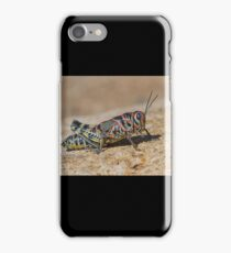 Colorful Grasshopper iPhone Case/Skin