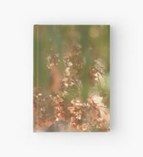 Seeing the Light Hardcover Journal