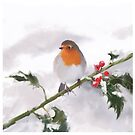 Robin in Winter Snow by Peter Taylor