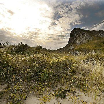 Dune Line by PatrickMHiggins