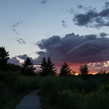 A Path to the Sunset - Summer Walk in the Park by GeorgiaM