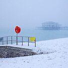 That One Day when Winter came to Brighton by Irina Chuckowree