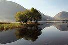Broad Water by SteveMG
