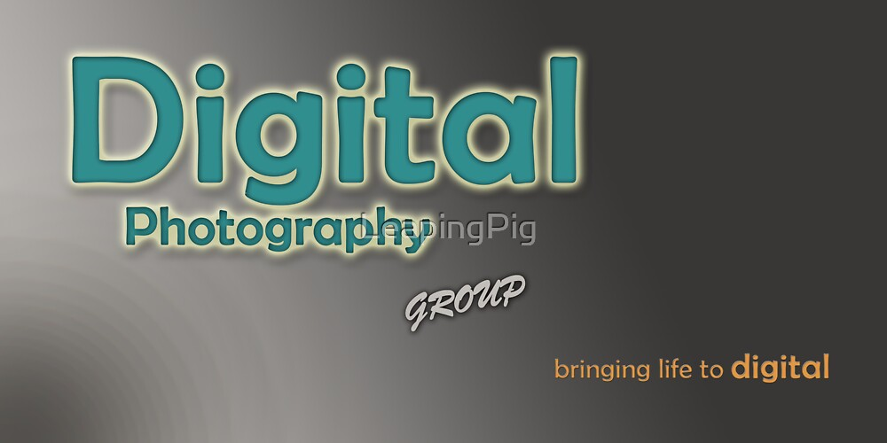 Digital Photography Group by LeapingPig