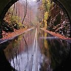 light at the end of the tunnel by dc witmer