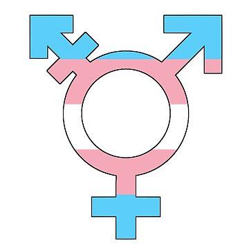 Transgender Pride Flag Symbol  by loganferret