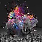 true colors II by soaringanchor