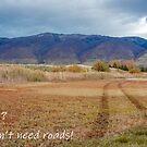 Roads? We Don't Need Roads! by Len Bomba