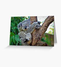 Hug a tree Greeting Card