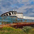"Nova Scotia relic ""Penny Lane III"" by Michele Conner"