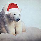 Christmas Polar Bear by Denise Abé