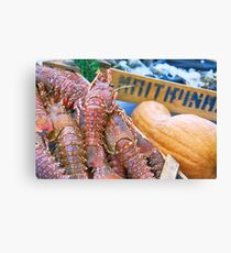 Spiny Lobsters Canvas Print