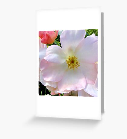 Beauty in Bloom Greeting Card