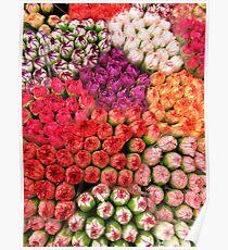 Mosaic of Petals Poster