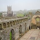 St Davids Bishops Palace - Wales by Marilyn Harris
