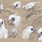Corellas by SnakeArtist