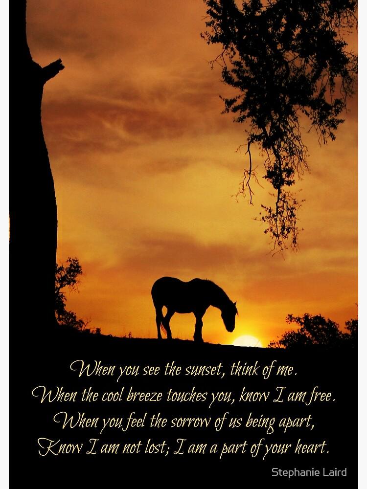 Beautiful Spiritual Horse Sympathy Poem Tribute Memorial   Greeting Card