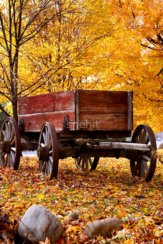 Quot Antique Wagon And Autumn Colors Quot By Snehit Redbubble
