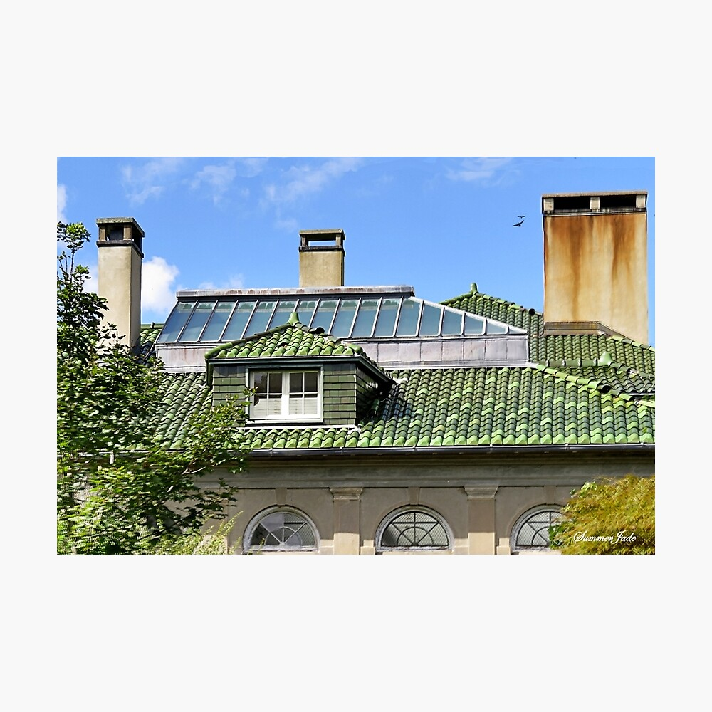 A Roof with Age and Character Photographic Print
