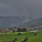 Rain Approaching  by Joy Watson