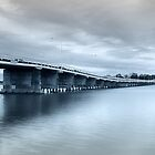 Blue Tones Forster 01 by kevin Chippindall