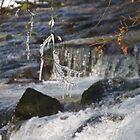 Eiszapfen über dem Avon von lezvee