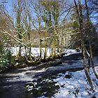 The River Avon In Winter by lezvee