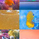 Sealife And Seashore Collage Vertical 3 by hurmerinta