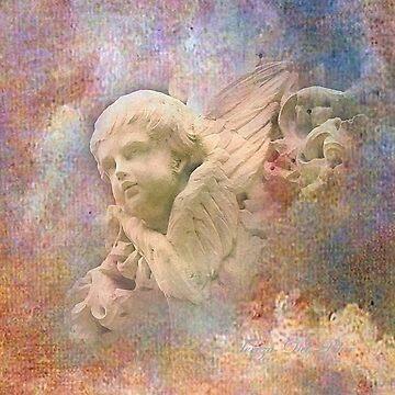 Angel  by terezadelpilar