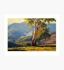 Sleeping Koala Turon Art Print