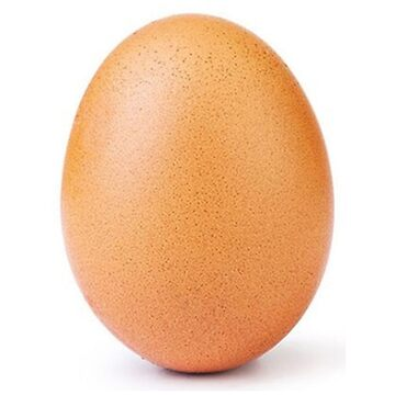 world record egg by untagged-shop