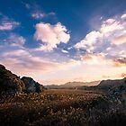 Golden Valley by Ralph Goldsmith