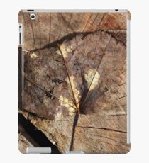 Beauty Of A Leaf iPad Case/Skin