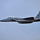 Oregon Air National Guard F-15 by Bob Hortman
