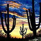 Saguaro Sunset  by Scott  Nordstrom